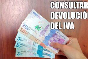 consultar-devolucion-del-iva