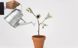 Encuentra fuentes de ingresos adicionales