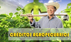 Mejores Créditos Agropecuarios de Colombia