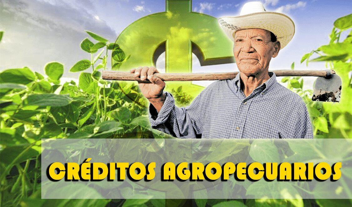 mejores-creditos-agropecuarios-colombia